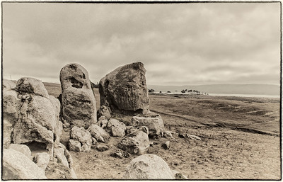 Raised Stones of Tomales Bay