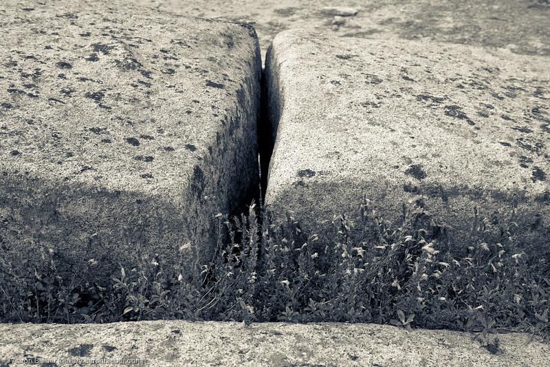 Split Crevasse