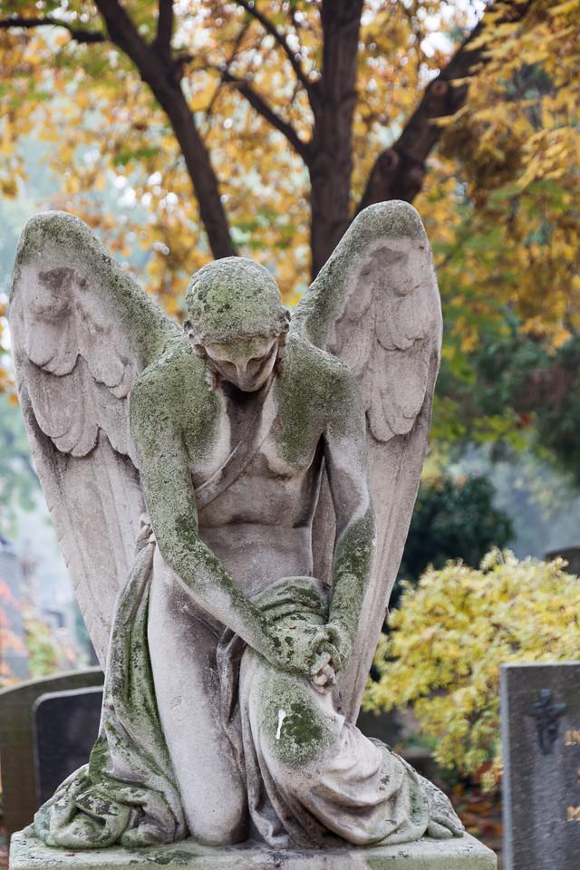 2011-11-01-9847