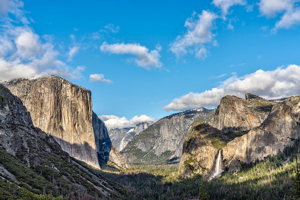 Afternoon in Yosemite