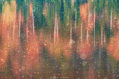 Naked Rains