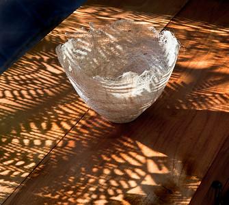 Juline's Bowl and Fern Shadows, San Rafael, 2012