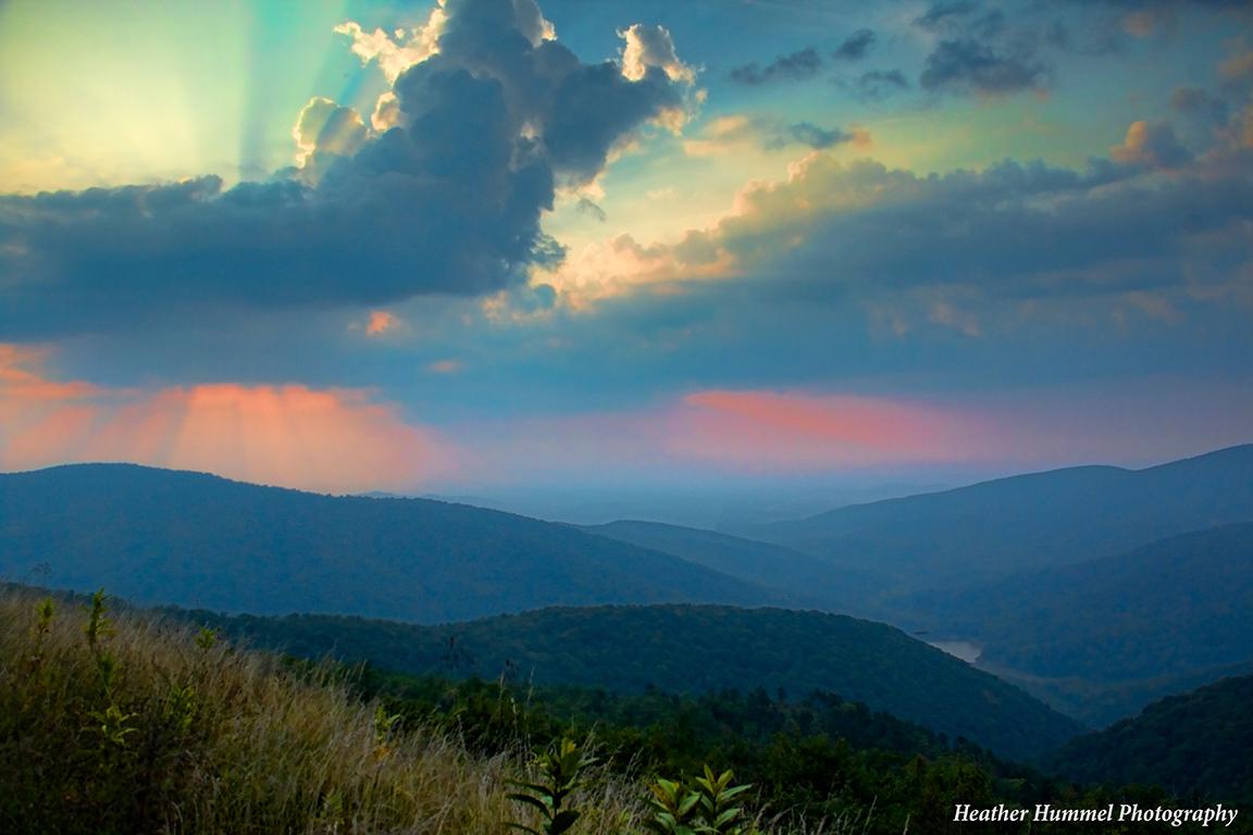 Morning Glory, Shenandoah National Park