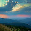 Morning Glory, Shenandoah National Park