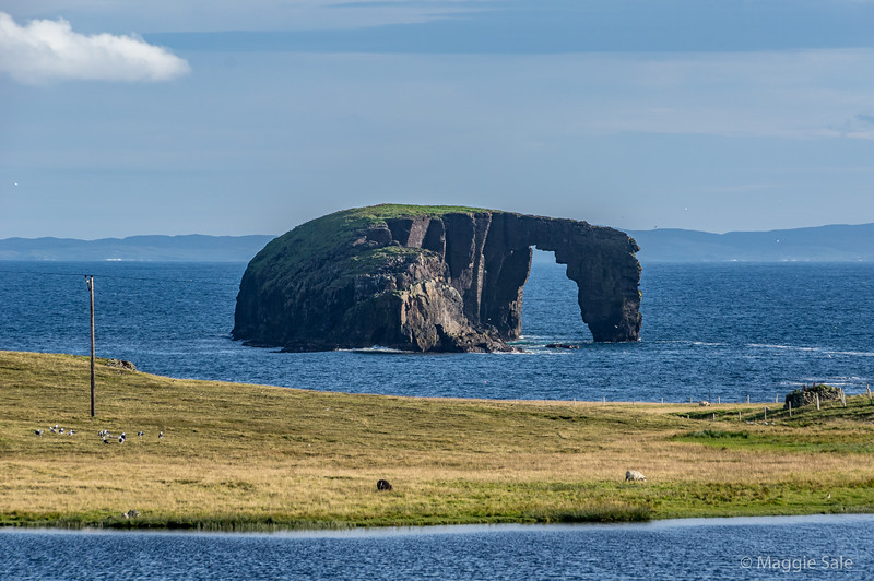 Dore Holm Arch, near Eshaness, Northmavine. Northmavine is the NW part of Mainland and is nearly an island, only being attached by a very narrow neck of land.