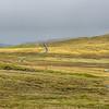Road in Northmavine