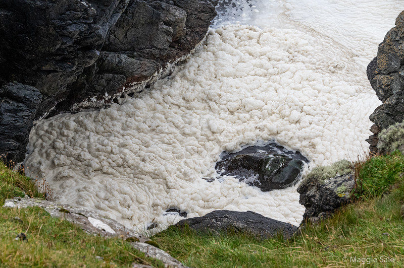Sea foam along coast at Dale, near Walls, West Mainland