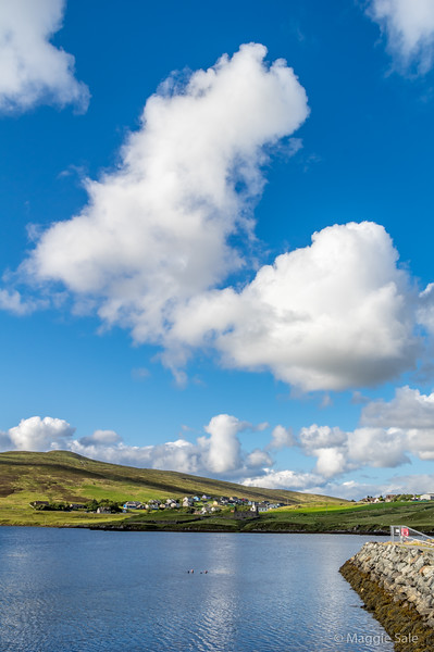 Harbour and village of Voe, on Olna Firth,  North Mainland