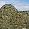 Abandoned crofts, Island of Bressay