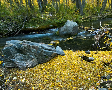 """Transience"" - McGee Creek, Eastern Sierras, CA"