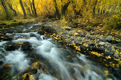 """Flowing Through Time"" - McGee Creek, Eastern Sierras, CA"