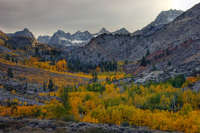 """Black and White (and yellow and orange...)"" - North Fork, Bishop Creek Canyon, Eastern Sierras, CA"