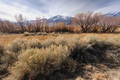 Owens Valley in Winter