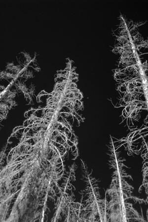 Eastern Sierras, IR