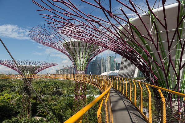 An elevated walkway at Gardens by the Bay. Absolutely a tourist attraction, but well worth the additional $5!