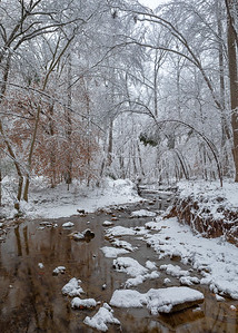 Black Creek, Cary NC.