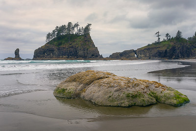 Second Beach, Olympic National Park, WA.