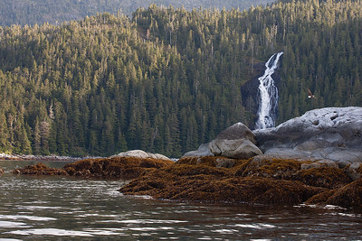 Waterfall, Eagle, on the way to Baranof Warm Springs