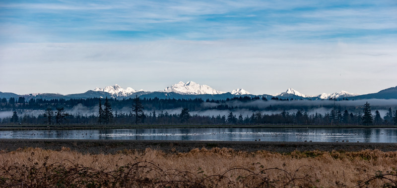 Cascades from the Snohomish River Valley