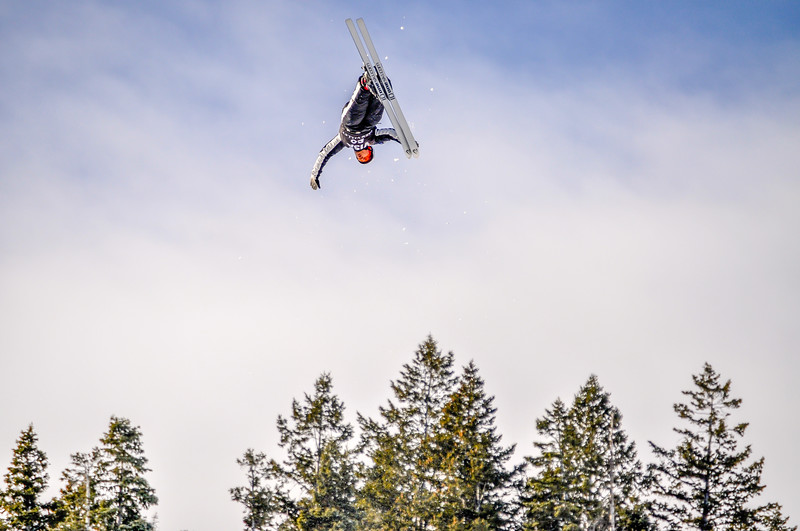 Flipping Over Trees
