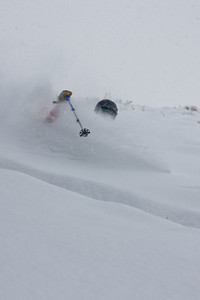 Damn, almost first tracks.