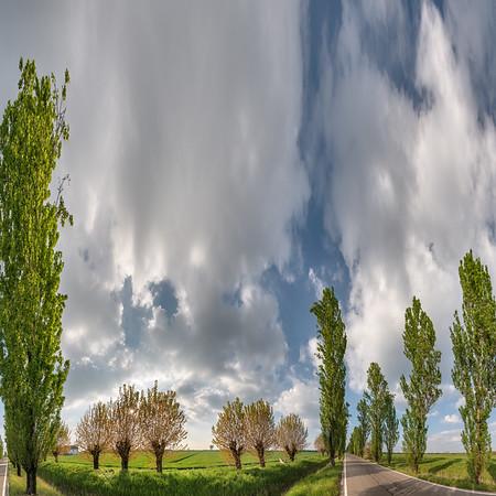 Strada della Vittoria - Novellara, Reggio Emilia, Italy - April 15, 2019