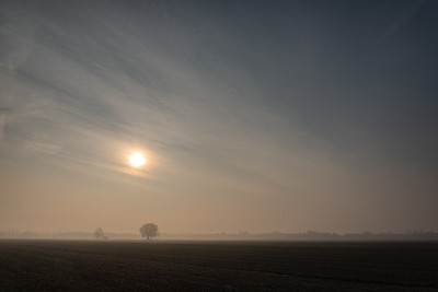 Misty Morning - Nonantola, Modena, Italy - January 7, 2019
