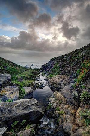 Coleman Creek, Sonoma coast.