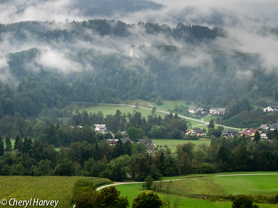 Valley in the Mist, Radovljica