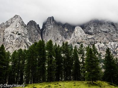 Sentinals in the Julian Alps