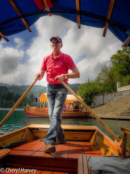 Pletna Oarsman on Lake Bled