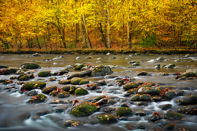 Little Pigeon River