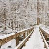 "Winter Footbridge The footbridge leading to the Ramsay Cascades Trail in the Greenbrier Section of the Great Smoky Mountains National Park. Lots more <a style=""color: #aaccee"" href=""http://williambritten.com/"">Smoky Mountains Photos</a> and info over on my blog."