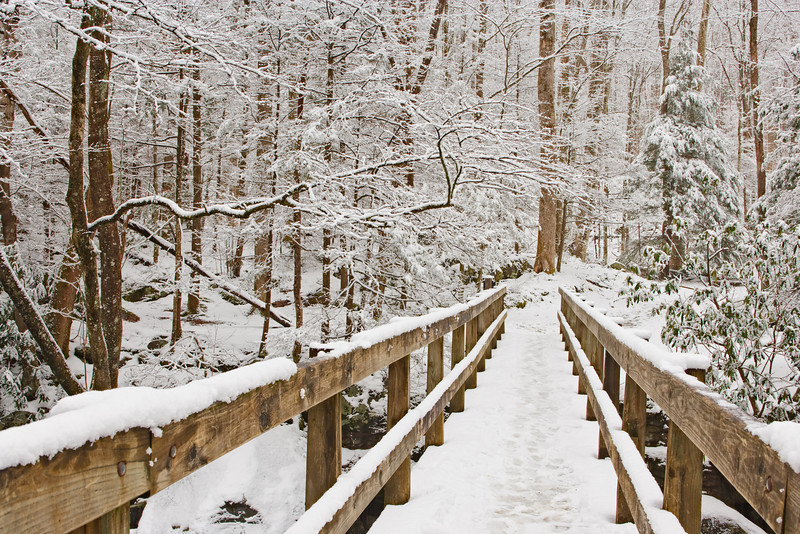 """Winter Footbridge The footbridge leading to the Ramsay Cascades Trail in the Greenbrier Section of the Great Smoky Mountains National Park. Lots more <a style=""""color: #aaccee"""" href=""""http://williambritten.com/"""">Smoky Mountains Photos</a> and info over on my blog."""