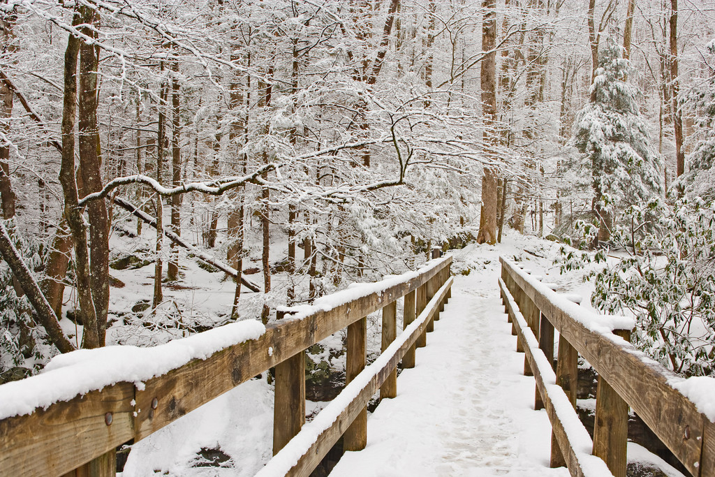 Winter Footbridge The footbridge leading to the Ramsay Cascades Trail in the Greenbrier Section of the Great Smoky Mountains National Park. Lots more Smoky Mountains Photos and info over on my blog.