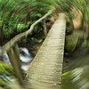 "Another long exposure while rotating the camera. Lots more <a style=""color: #aaccee"" href=""http://williambritten.com/"">Smoky Mountains Photos</a> and info over on my blog."