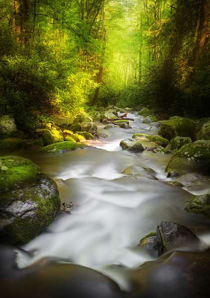 "Mood and Drama along the Roaring Fork. Smoky Mountains. Lots more <a style=""color: #aaccee"" href=""http://williambritten.com/"">Smoky Mountains Photos</a> and info over on my blog."