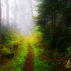 """High Saturation Moody version of Peace in Wild Places (see Summer Gallery) Lots more <a style=""""color: #aaccee"""" href=""""http://williambritten.com/"""">Smoky Mountains Photos</a> and info over on my blog."""