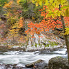 "Maple Cascade Along the Little River Road in the Great Smoky Mountains National Park. Lots more <a style=""color: #aaccee"" href=""http://williambritten.com/"">Smoky Mountains Photos</a> and info over on my blog."