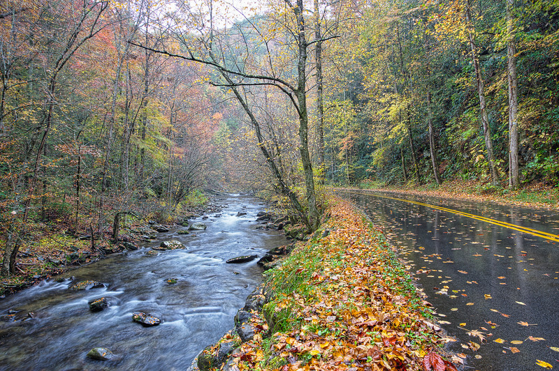 "Road to Tremont The magic of a rainy day in autumn in the Great Smoky Mountains. Lots more <a style=""color: #aaccee"" href=""http://williambritten.com/"">Smoky Mountains Photos</a> and info over on my blog."