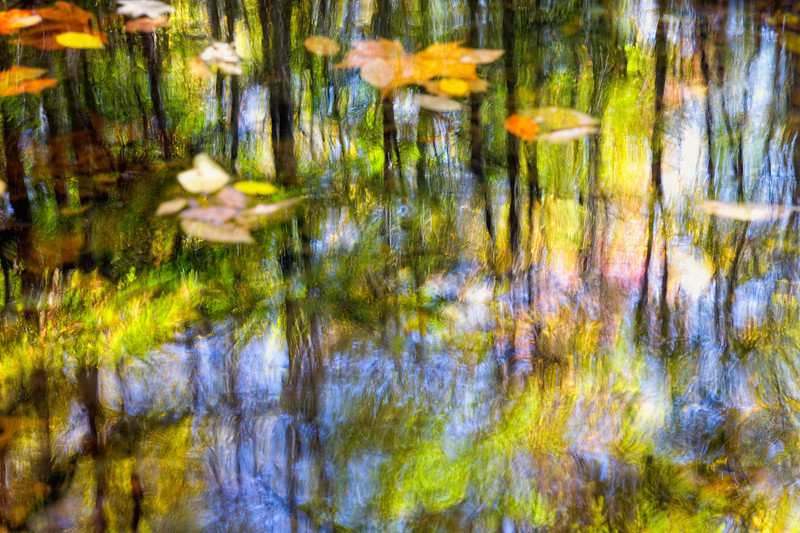 "Smoky Mountain Monet About a 10 second time exposure creates the ""Monet effect"" in a pool of water in the Great Smoky Mountains National Park. Lots more Smoky Mountains Photos and info over on my blog."