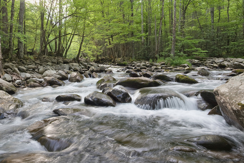 "Greenbrier Spring A full stream after heavy spring rains in the Greenbrier section of the Great Smoky Mountains National Park. This image was stitched together from 9 separate exposures, and shows incredible detail in large sizes. Lots more <a style=""color: #aaccee"" href=""http://williambritten.com/"">Smoky Mountains Photos</a> and info over on my blog."