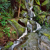"Place of 1000 Drips A waterfall along the Roaring Fork Motor trail just outside Gatlinburg in the Great Smoky Mountains National Park.  This waterfall tends to dry up in summer and fall. Lots more <a style=""color: #aaccee"" href=""http://williambritten.com/"">Smoky Mountains Photos</a> and info over on my blog."