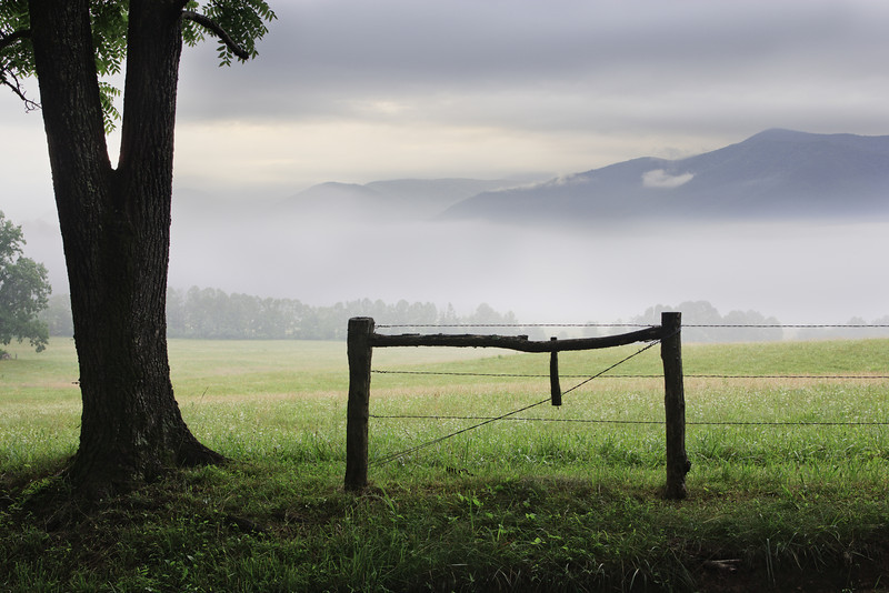 """Cades Cove Misty Morning Lots more <a style=""""color: #aaccee"""" href=""""http://williambritten.com/"""">Smoky Mountains Photos</a> and info over on my blog."""