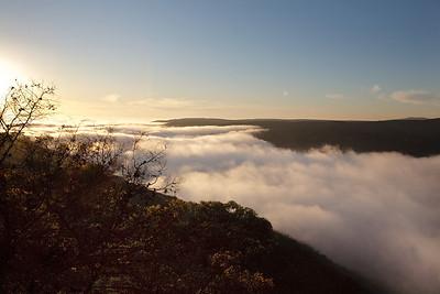 Fog rolling inland through Laguna Canyon