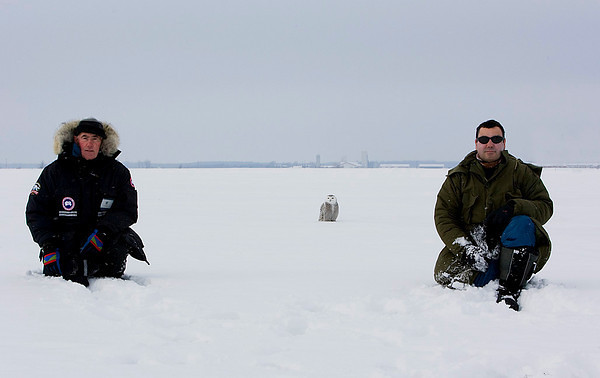Snowy Owl. Miguel  and me 2008.