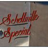 Shellville October 10, 2015