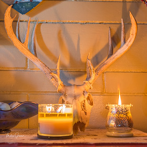 Skull in Candle Light