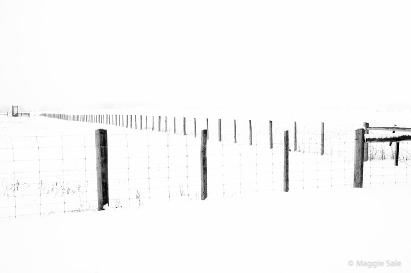 Fence in the Snow, Caledon, Ontario
