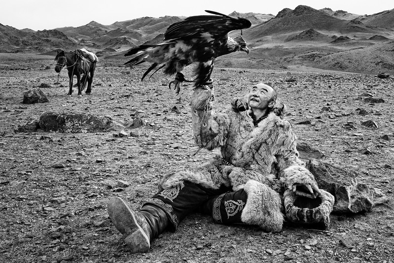 Eagle Hunter with his Companions